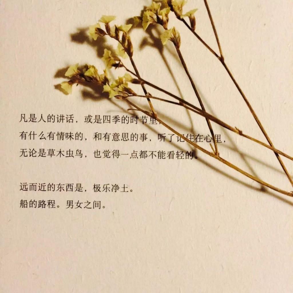 书籍创意设计之美与文字浩然之气-上海野火创意